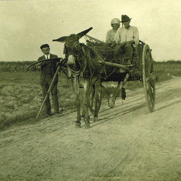 I vecchi trattori di una volta