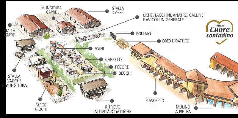 Mappa Azienda